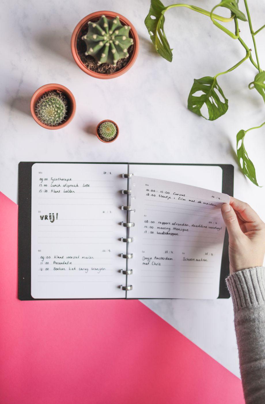 Klickbare A5 Whiteboard-Seiten für den wiederverwendbaren Asoki Planer