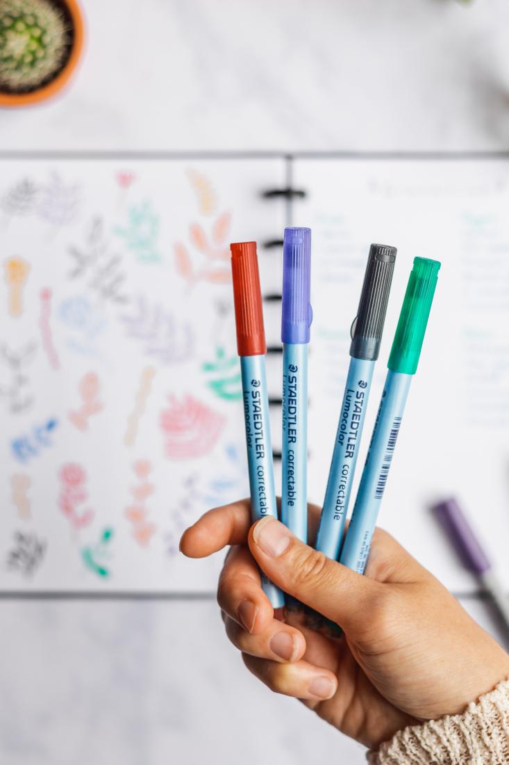 Entfernbare Stifte, Rot, Blau, Schwarz und Grün, mit veganem Filzradierer