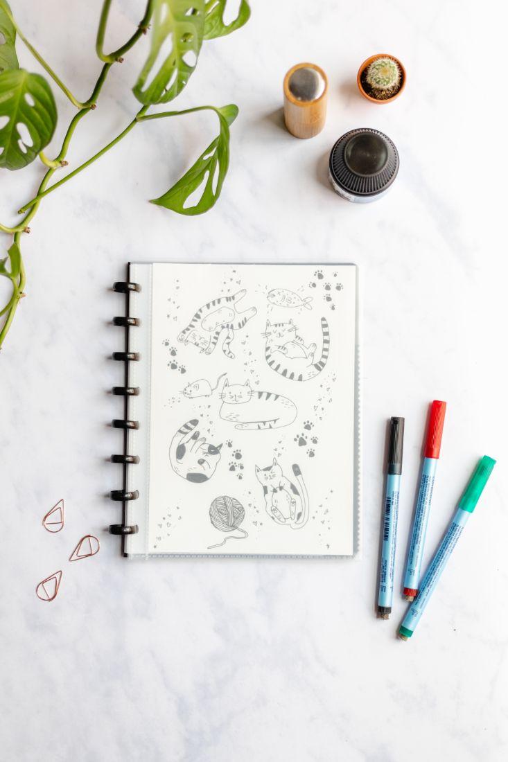 Wiederverwendbares Notizbuch mit transparentem Cover